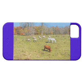 Moutons de cheval de vache frôlant sur l'herbe étuis iPhone 5
