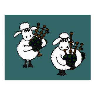 Moutons impressionnants de BI jouant des Carte Postale