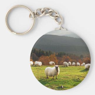 moutons typiques de latxa de pays Basque Porte-clés
