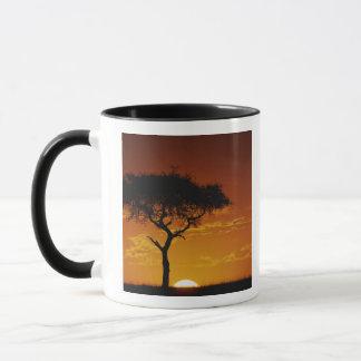 Mug Acacia d'épine de parapluie, tortilis d'acacia,