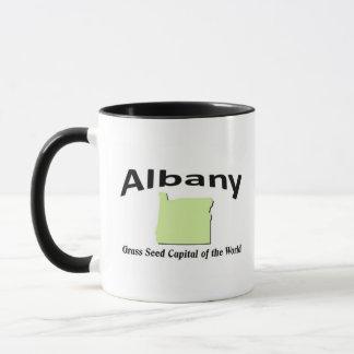 Mug Albany