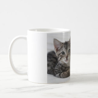 Mug Amis de chaton pour toujours