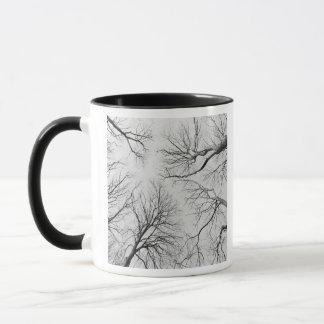 Mug Arbres sans feuilles en bois de Thiepval