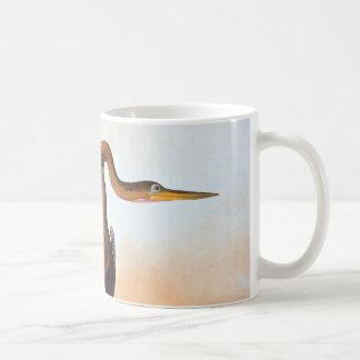 Mug Audubon : Anhinga