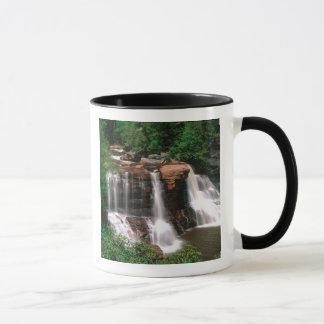 Mug Automnes de Blackwater, la Virginie Occidentale,