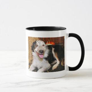 Mug Bella s'est levé - border collie