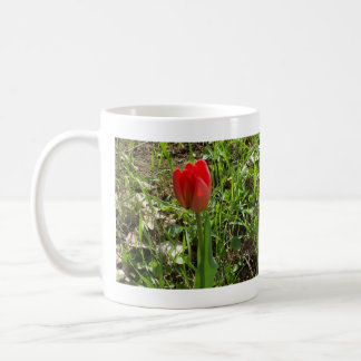 Mug Belle tulipe rouge environ à s'ouvrir