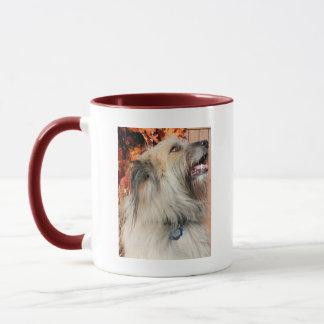 Mug Benny - Briard Photo-07