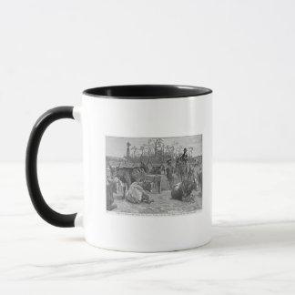 Mug Bétail dans un corral de maïs du Kansas