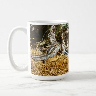 Mug Biologie d'un lézard de dragon barbu de bébé,