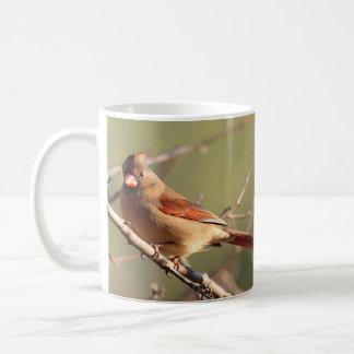 Mug Cardinal du nord