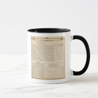 Mug Carte de section de T16S R24E Tulare County