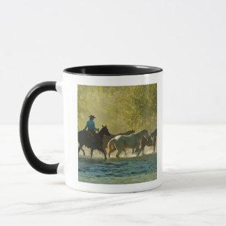 Mug Cavalier de Horseback vivant en troupe des chevaux