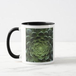 Mug Centre de cactus