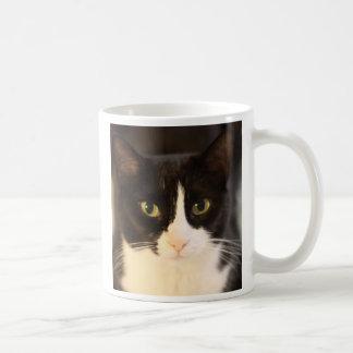 Mug Chat de Fritzie