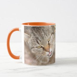 Mug Chat velu de rayure de tigre de faon d'ami de
