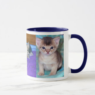 Mug Chatons abyssiniens