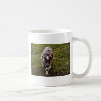Mug Chèvre aux cheveux longs
