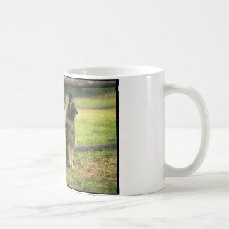Mug Chiens de berger allemand