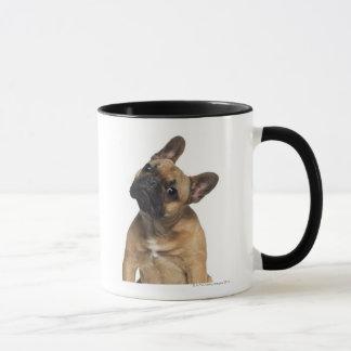 Mug Chiot de bouledogue français (7 mois)