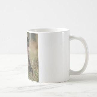 """Mug Chiot """"éclaboussure """" allemand de berger"""