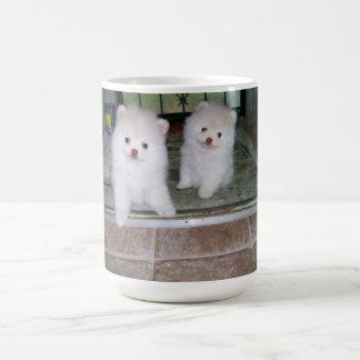 Mug Chiots pomeranian blancs à la porte