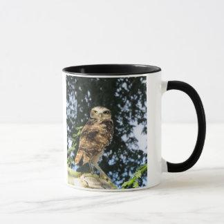 Mug Creuser le hibou