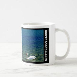 Mug cygne solitaire dans l'océan bleu