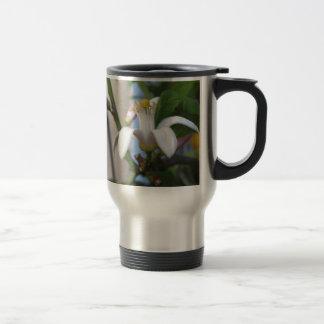 Mug De Voyage Fleur et feuille de citronnier