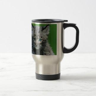 Mug De Voyage Le chat sauvage observe le beau chat sauvage