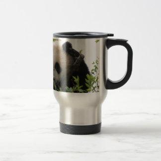 Mug De Voyage Le Su Lin, petit animal d'ours panda géant au zoo