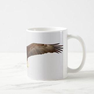Mug Eagle chauve en vol