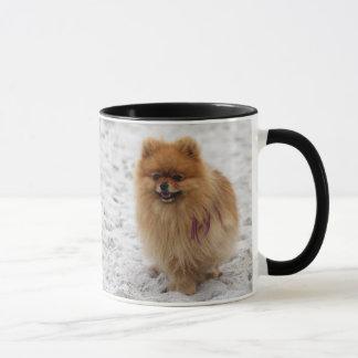 Mug Edgrrrr #2 - Pomeranian