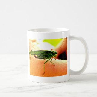 Mug Eeek !  Il y a une sauterelle sur mon bras !