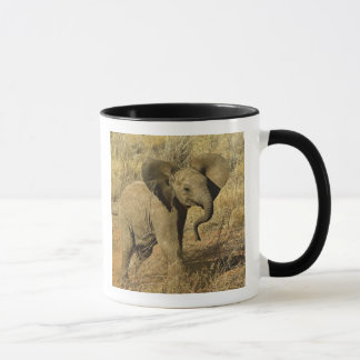 Mug Éléphant africain de bébé, Loxodonta Africana,