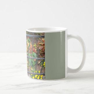 Mug En pleine floraison