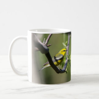Mug fauvette Bleu-à ailes