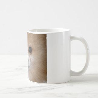 Mug Fin de Pomeranian