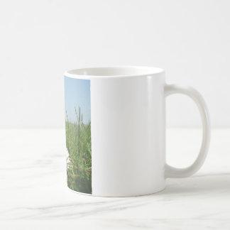 Mug Fleur sur la terre