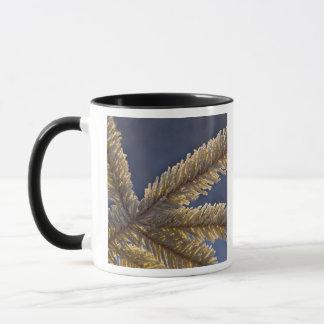 Mug Frost sur l'arbre à feuillage persistant, Homer,