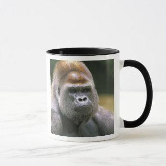 Mug Gorille de plaine. Gorille de gorille