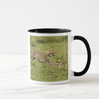Mug Guépard, jubatus d'Acinonyx, petits animaux