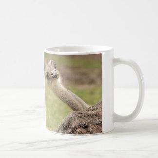 Mug Hé bon Lookin