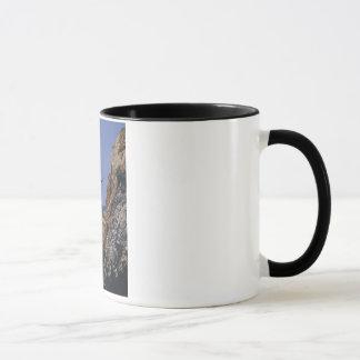 Mug Il effiloche