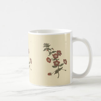 Mug Illustration botanique de mouron arbustif