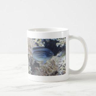 Mug Image tropicale colorée de poissons