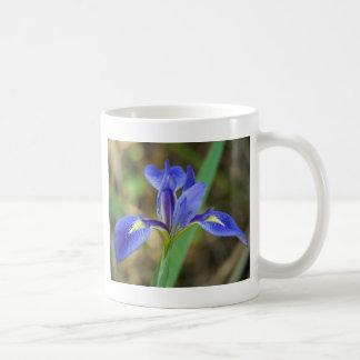 Mug Iris de la Floride