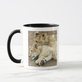Mug Jeu de deux petits animaux de lions
