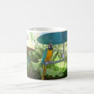 Mug Joli perroquet