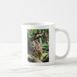 Mug Jolie girafe gracieuse